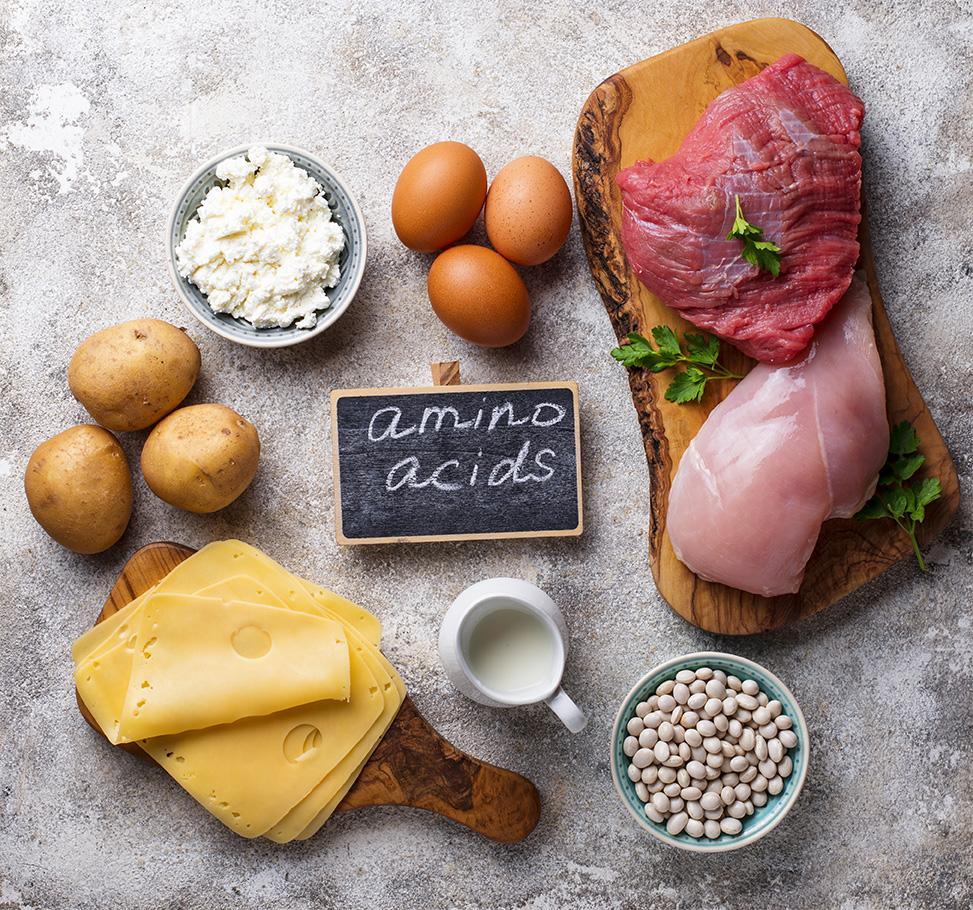 アミノ酸と食品